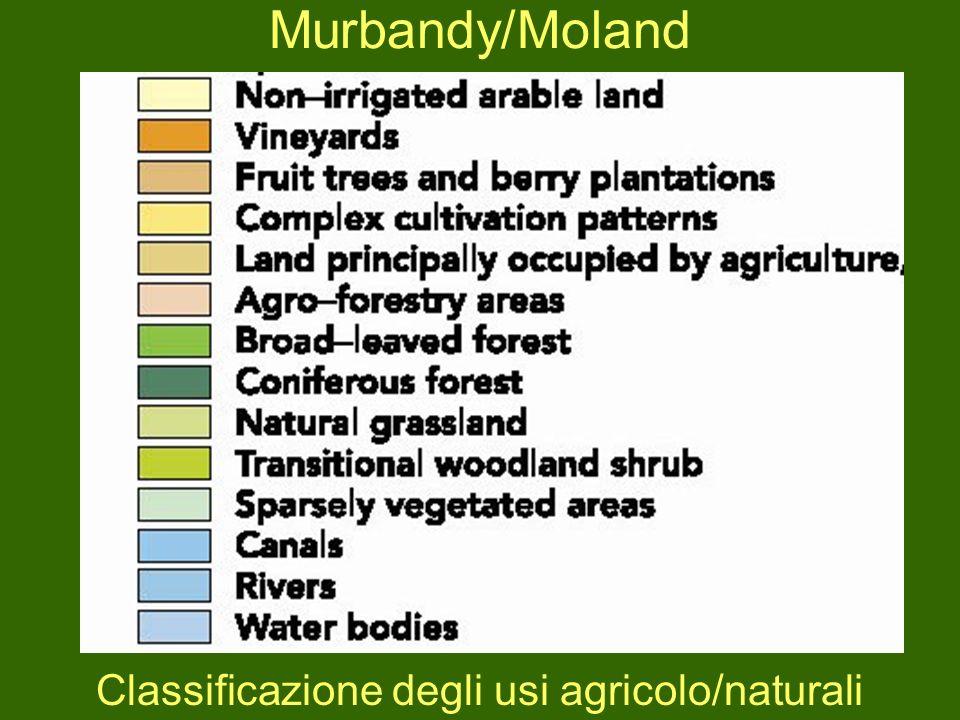 Murbandy/Moland Classificazione degli usi agricolo/naturali