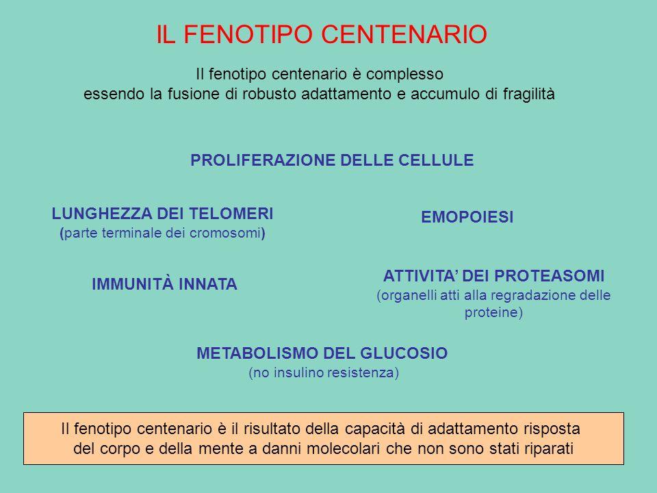 IL FENOTIPO CENTENARIO Il fenotipo centenario è complesso essendo la fusione di robusto adattamento e accumulo di fragilità PROLIFERAZIONE DELLE CELLU