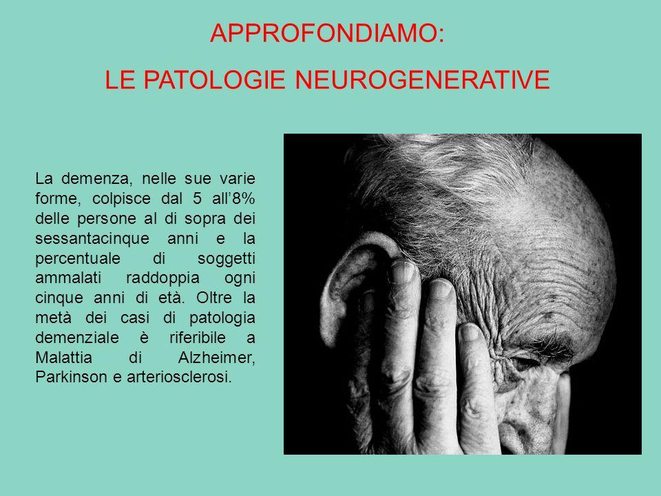 La demenza, nelle sue varie forme, colpisce dal 5 all8% delle persone al di sopra dei sessantacinque anni e la percentuale di soggetti ammalati raddop