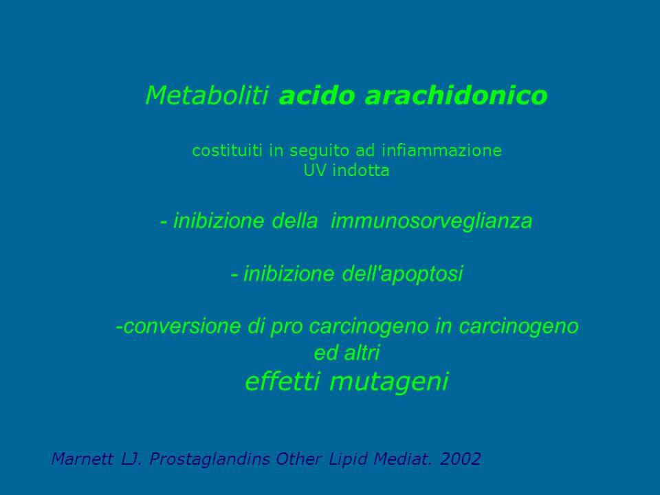 Metaboliti acido arachidonico costituiti in seguito ad infiammazione UV indotta - inibizione della immunosorveglianza - inibizione dell'apoptosi -conv