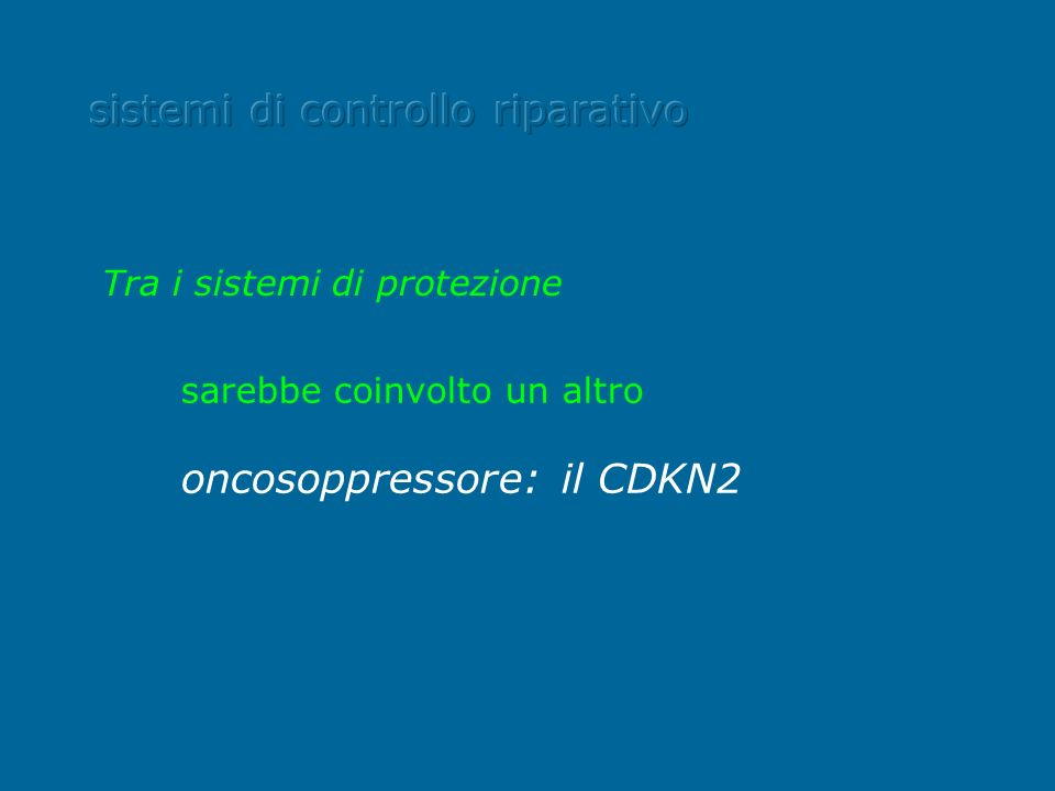 sarebbe coinvolto un altro oncosoppressore: il CDKN2 Tra i sistemi di protezione