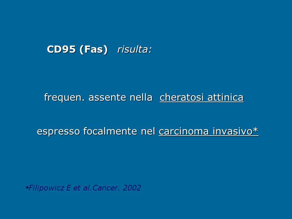 espresso focalmente nel carcinoma invasivo* espresso focalmente nel carcinoma invasivo* CD95 (Fas) frequen. assente nella cheratosi attinica frequen.