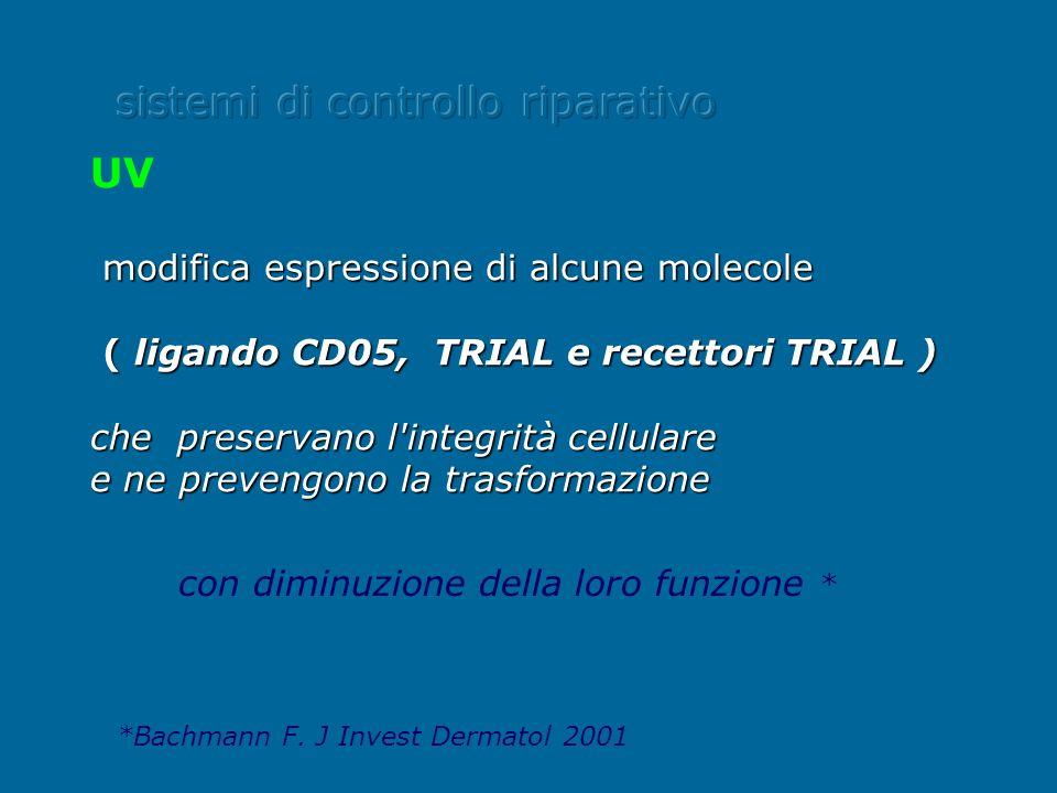 UV modifica espressione di alcune molecole ( ligando CD05, TRIAL e recettori TRIAL ) ( ligando CD05, TRIAL e recettori TRIAL ) che preservano l'integr