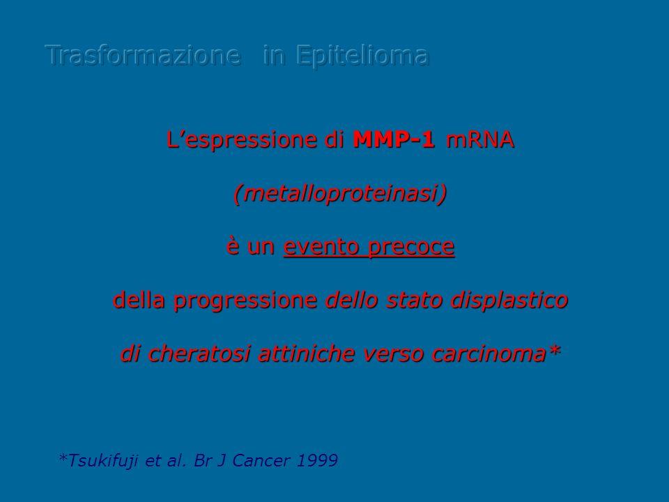 Lespressione di MMP-1 mRNA (metalloproteinasi) è un evento precoce della progressione dello stato displastico di cheratosi attiniche verso carcinoma*