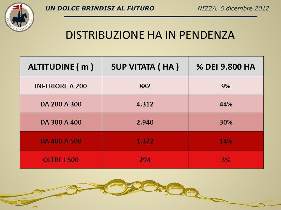 DISTRIBUZIONE HA IN PENDENZA ALTITUDINE ( m )SUP VITATA ( HA )% DEI 9.800 HA INFERIORE A 2008829% DA 200 A 3004.31244% DA 300 A 4002.94030% DA 400 A 5