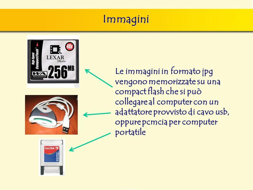 Immagini Le immagini in formato jpg vengono memorizzate su una compact flash che si può collegare al computer con un adattatore provvisto di cavo usb,