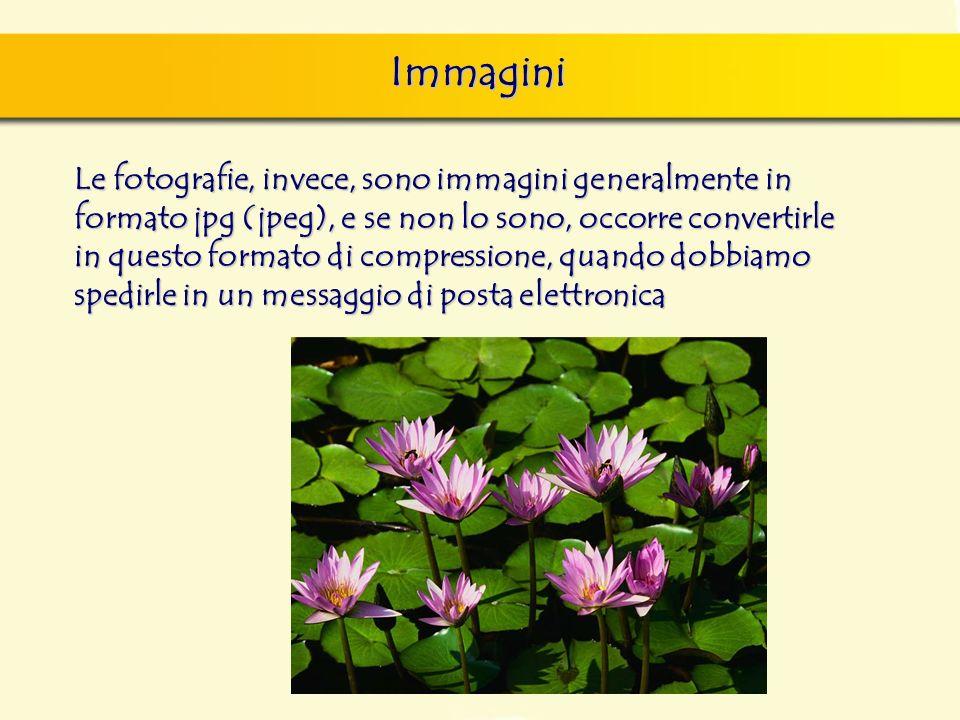 Immagini Le fotografie, invece, sono immagini generalmente in formato jpg (jpeg), e se non lo sono, occorre convertirle in questo formato di compressi