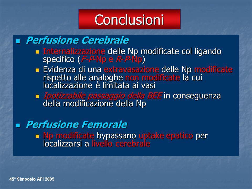 Conclusioni Perfusione Cerebrale Perfusione Cerebrale Internalizzazione delle Np modificate col ligando specifico (F-P-Np e R-P-Np) Internalizzazione
