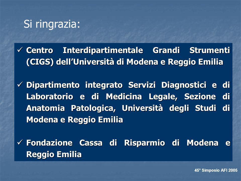 Si ringrazia: Centro Interdipartimentale Grandi Strumenti (CIGS) dellUniversità di Modena e Reggio Emilia Centro Interdipartimentale Grandi Strumenti