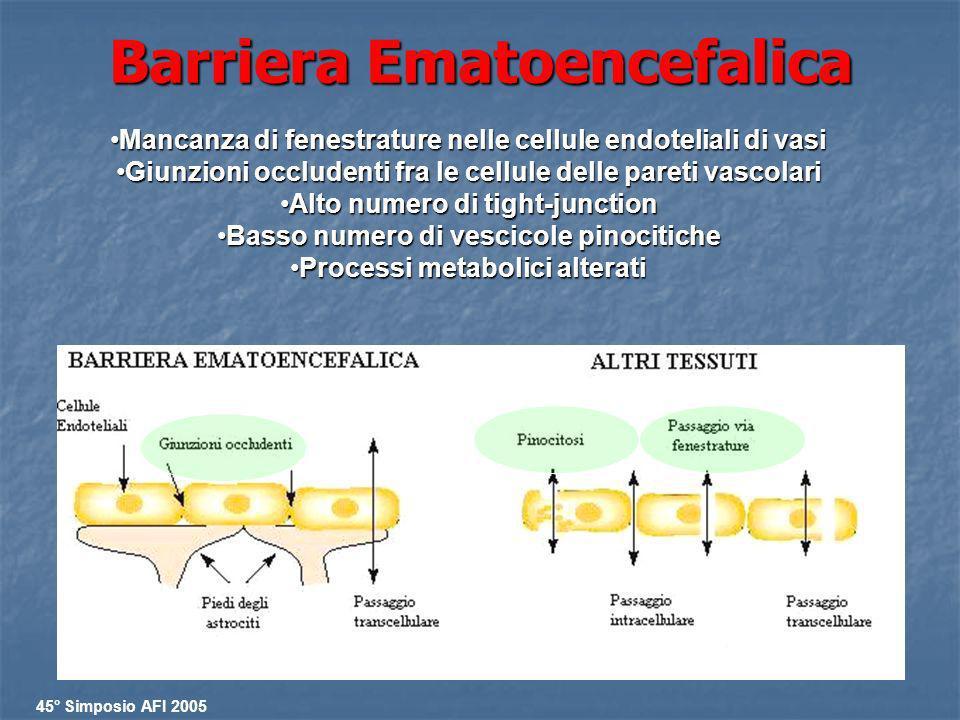 Barriera Ematoencefalica Mancanza di fenestrature nelle cellule endoteliali di vasiMancanza di fenestrature nelle cellule endoteliali di vasi Giunzion