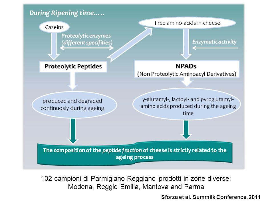 102 campioni di Parmigiano-Reggiano prodotti in zone diverse: Modena, Reggio Emilia, Mantova and Parma Sforza et al. Summilk Conference, 2011