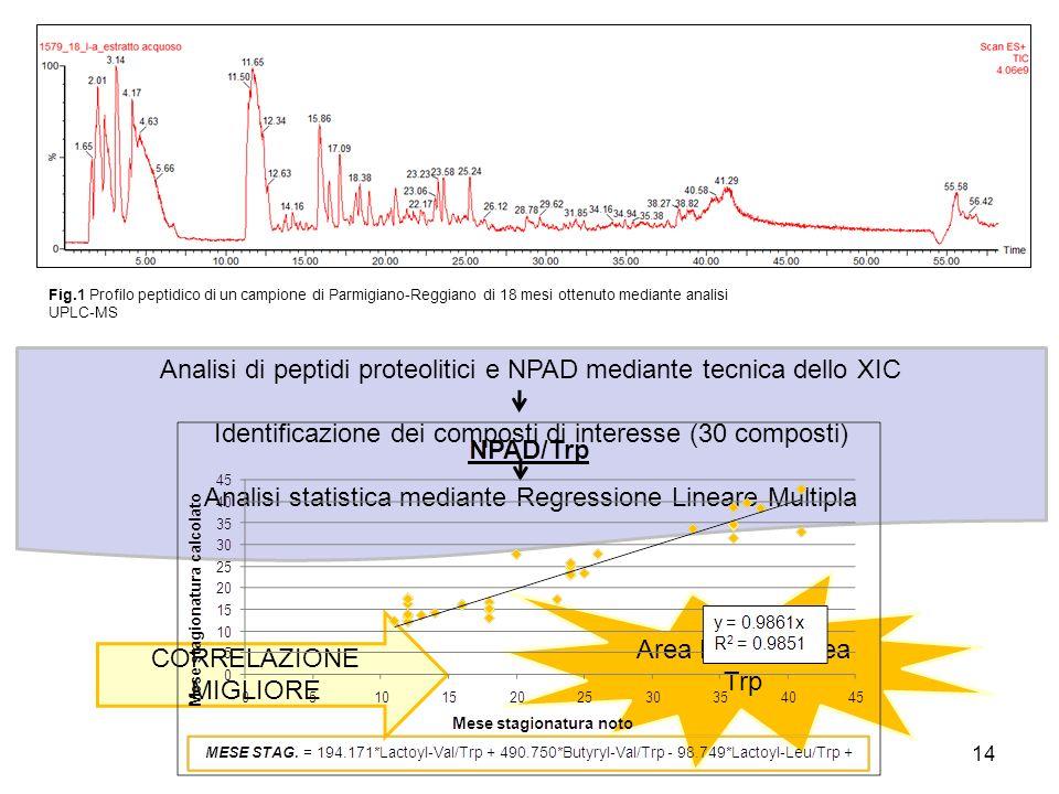Fig.1 Profilo peptidico di un campione di Parmigiano-Reggiano di 18 mesi ottenuto mediante analisi UPLC-MS 14 Analisi di peptidi proteolitici e NPAD m