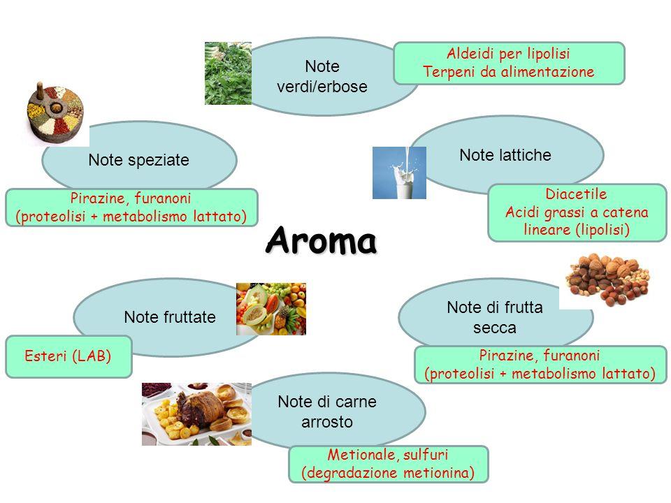 Aroma Note lattiche Note speziate Note fruttate Note di frutta secca Note verdi/erbose Note di carne arrosto Aldeidi per lipolisi Terpeni da alimentaz