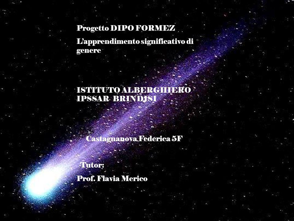 Progetto DIPO FORMEZ Lapprendimento significativo di genere ISTITUTO ALBERGHIERO IPSSAR BRINDISI Castagnanova Federica 5F Tutor: Prof. Flavia Merico