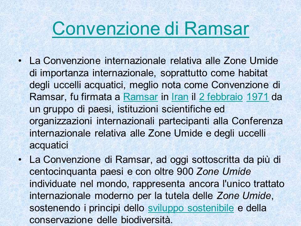 La Convenzione internazionale relativa alle Zone Umide di importanza internazionale, soprattutto come habitat degli uccelli acquatici, meglio nota com