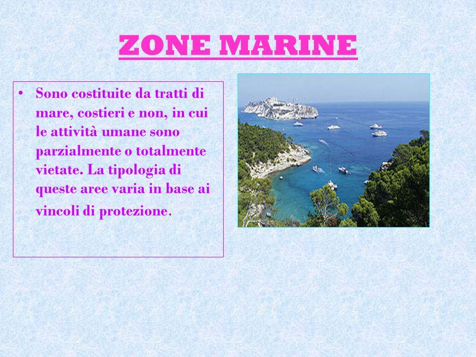 ZONE MARINE Sono costituite da tratti di mare, costieri e non, in cui le attività umane sono parzialmente o totalmente vietate. La tipologia di queste