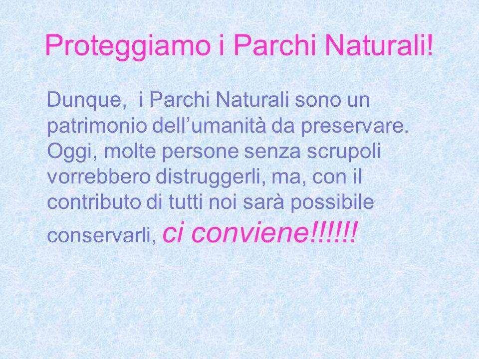 Proteggiamo i Parchi Naturali! Dunque, i Parchi Naturali sono un patrimonio dellumanità da preservare. Oggi, molte persone senza scrupoli vorrebbero d