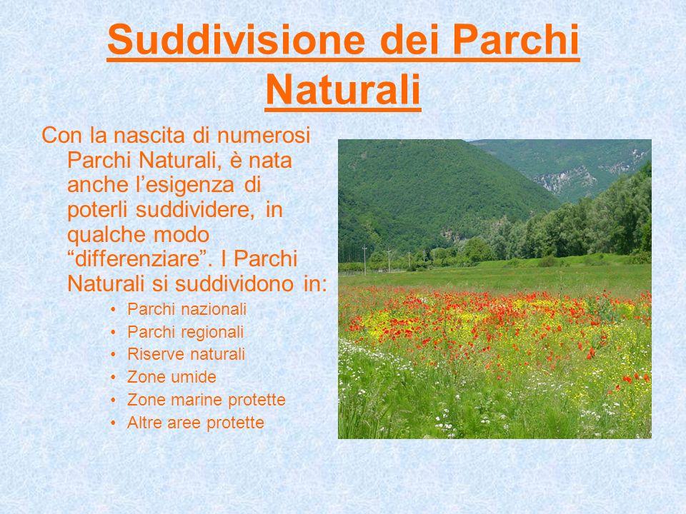 Suddivisione dei Parchi Naturali Con la nascita di numerosi Parchi Naturali, è nata anche lesigenza di poterli suddividere, in qualche modo differenzi