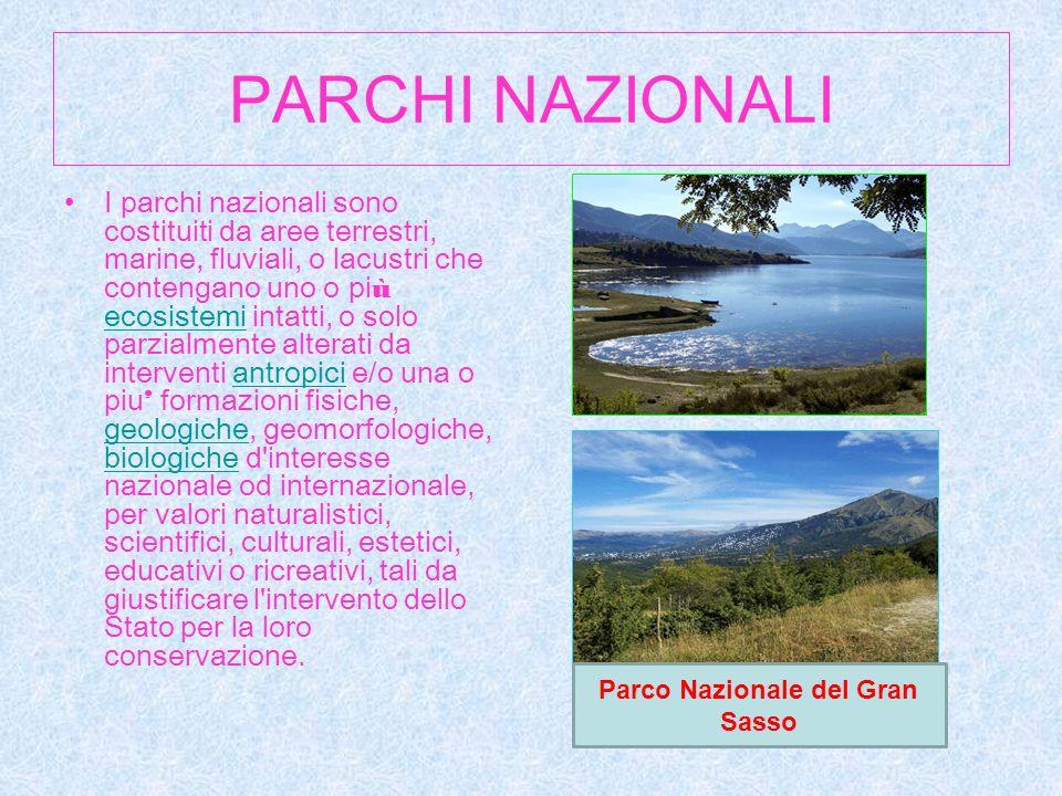 PARCHI NAZIONALI I parchi nazionali sono costituiti da aree terrestri, marine, fluviali, o lacustri che contengano uno o pi ù ecosistemi intatti, o so