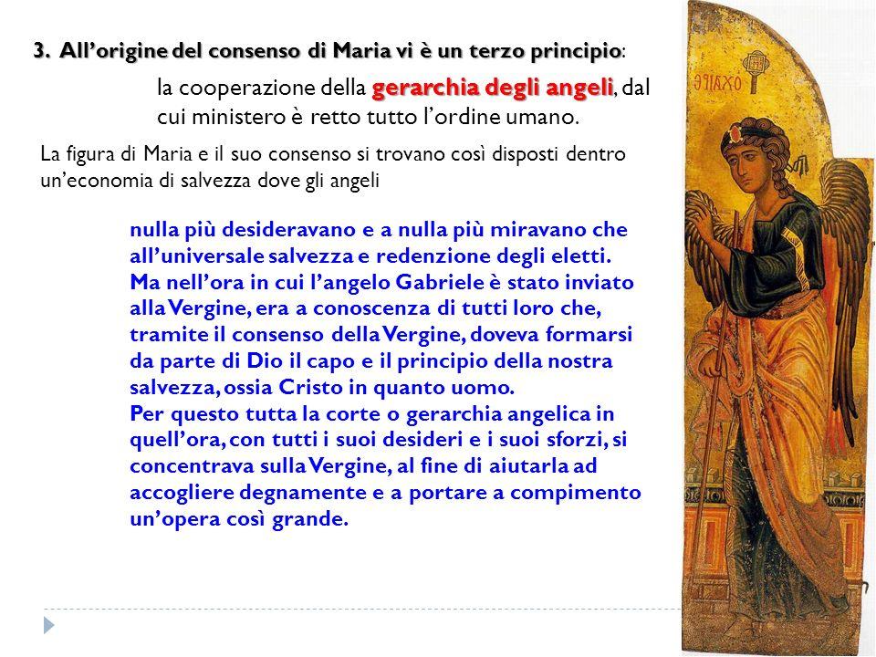 3. Allorigine del consenso di Maria vi è un terzo principio 3. Allorigine del consenso di Maria vi è un terzo principio: gerarchia degli angeli la coo