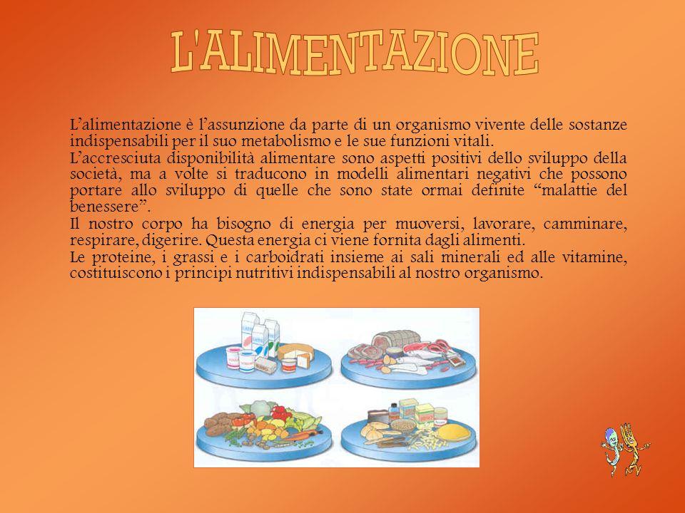 Gli alimenti caratteristici della dieta mediterranea sono legati alla terra, al mare, alla cultura del nostro Paese.