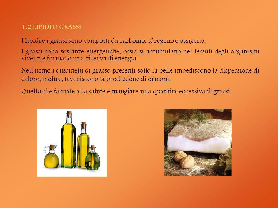 ALCUNI ORGANISMI OGM Pomodoro: prima pianta transgenica messa sul mercato; le sue caratteristiche: maggiori dimensioni e una più lunga conservazione.