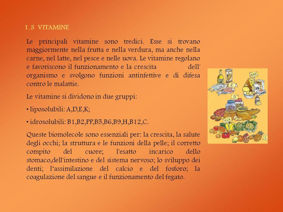 1.4 GLUCIDI O CARBOIDRATI La pasta, il riso, il pane, le patate contengono in prevalenza amidi.