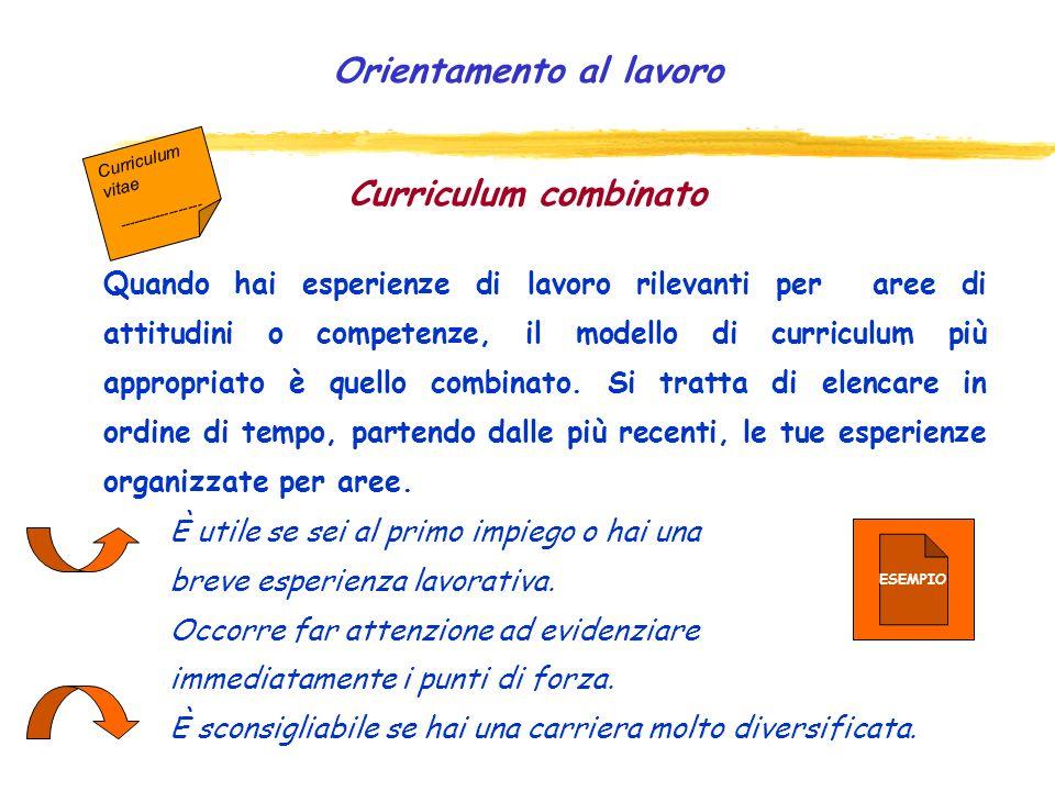 Curriculum funzionale Nel modello funzionale le informazioni vengono organizzate in aree o sezioni. Ciascuna sezione comprenderà la descrizione delle
