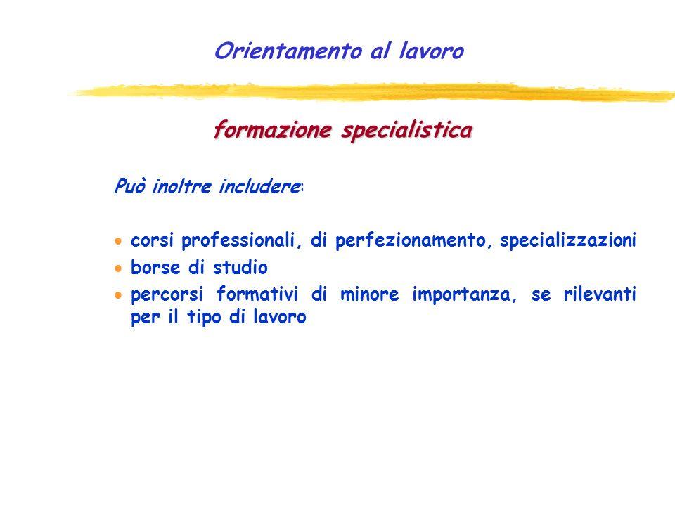 Orientamento al lavoro formazione specialistica Può inoltre includere: corsi professionali, di perfezionamento, specializzazioni borse di studio percorsi formativi di minore importanza, se rilevanti per il tipo di lavoro