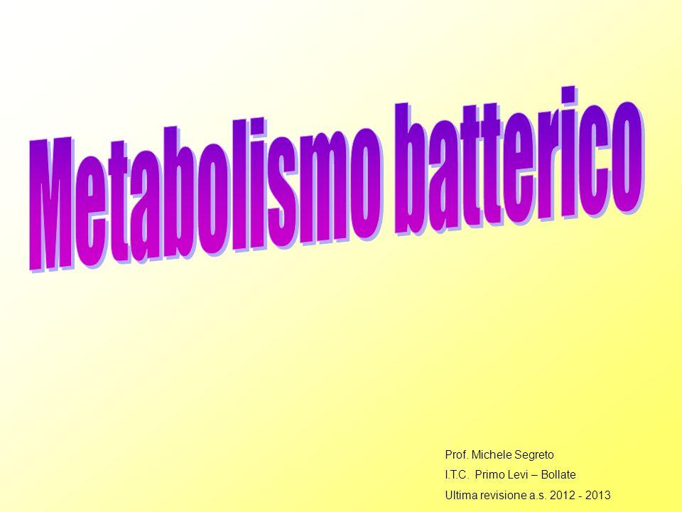 Prof. Michele Segreto I.T.C. Primo Levi – Bollate Ultima revisione a.s. 2012 - 2013