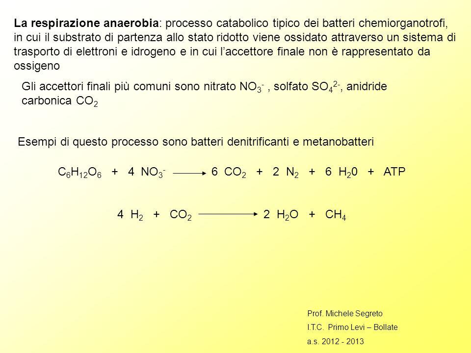 La respirazione anaerobia: processo catabolico tipico dei batteri chemiorganotrofi, in cui il substrato di partenza allo stato ridotto viene ossidato attraverso un sistema di trasporto di elettroni e idrogeno e in cui laccettore finale non è rappresentato da ossigeno Gli accettori finali più comuni sono nitrato NO 3 -, solfato SO 4 2-, anidride carbonica CO 2 Esempi di questo processo sono batteri denitrificanti e metanobatteri C 6 H 12 O 6 + 4 NO 3 - 6 CO 2 + 2 N 2 + 6 H 2 0 + ATP 4 H 2 + CO 2 2 H 2 O + CH 4 Prof.