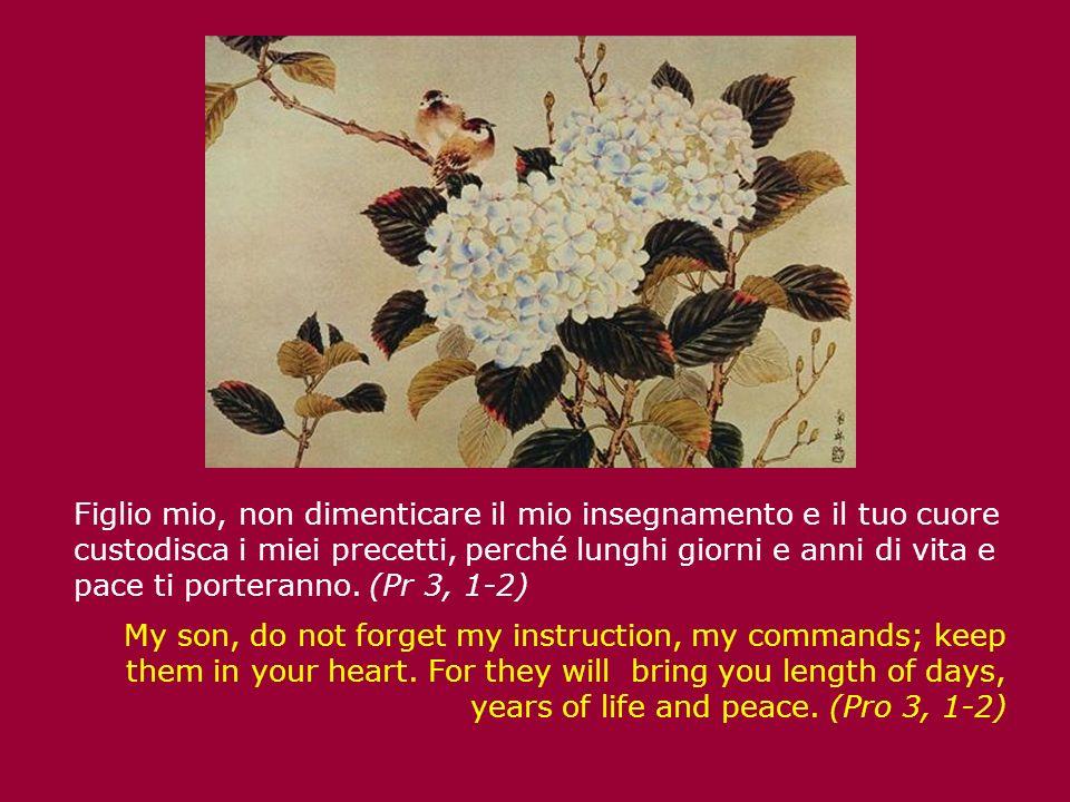 Figlio mio, non dimenticare il mio insegnamento e il tuo cuore custodisca i miei precetti, perché lunghi giorni e anni di vita e pace ti porteranno. (