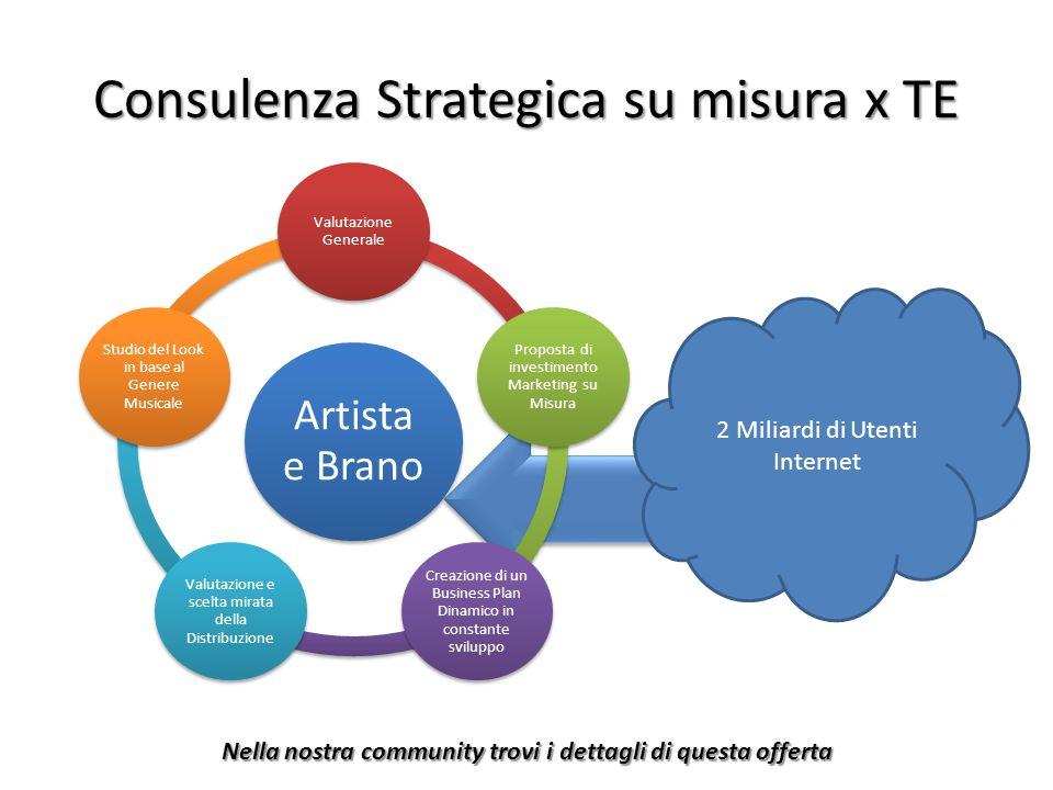 Consulenza Strategica su misura x TE Artista e Brano Valutazione Generale Proposta di investimento Marketing su Misura Creazione di un Business Plan D