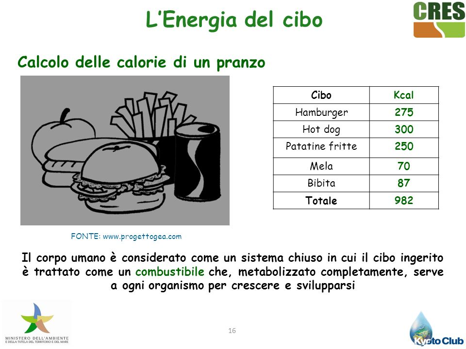 16 Calcolo delle calorie di un pranzo CiboKcal Hamburger275 Hot dog300 Patatine fritte250 Mela70 Bibita87 Totale982 Il corpo umano è considerato come