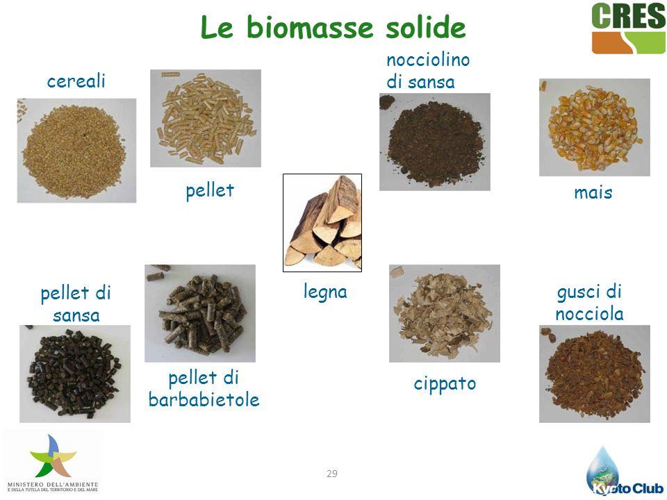 29 Le biomasse solide mais gusci di nocciola nocciolino di sansa pellet pellet di barbabietole pellet di sansa cereali cippato legna