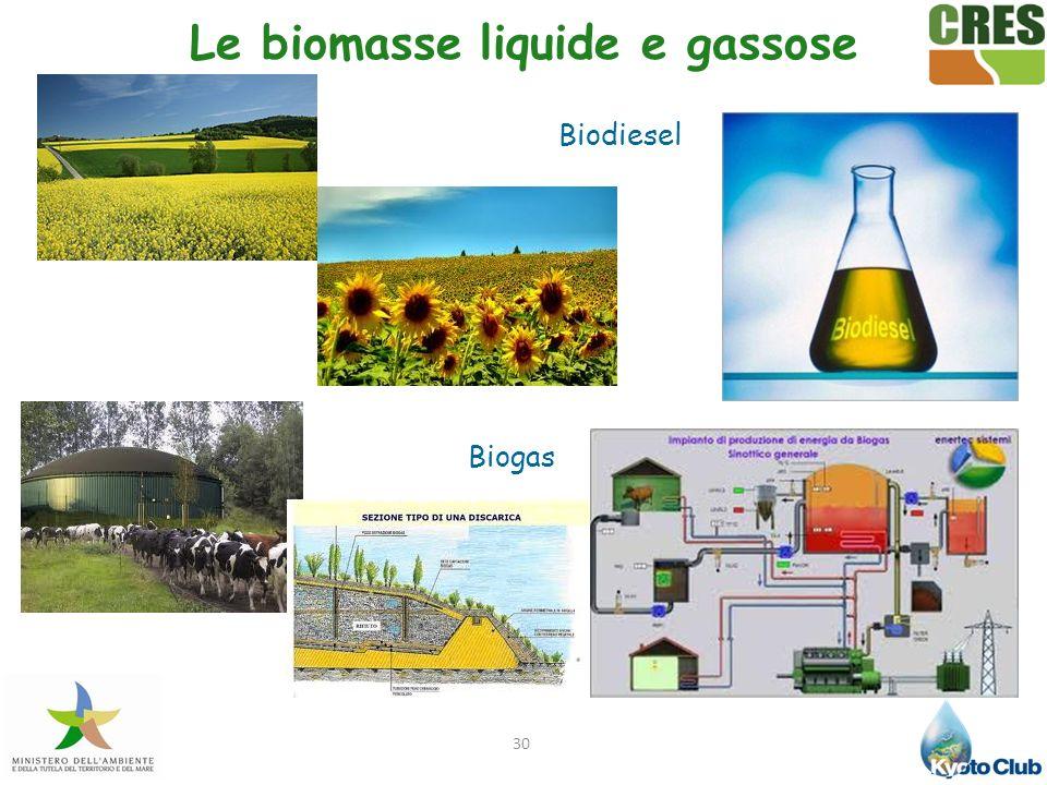 30 Le biomasse liquide e gassose Biodiesel Biogas