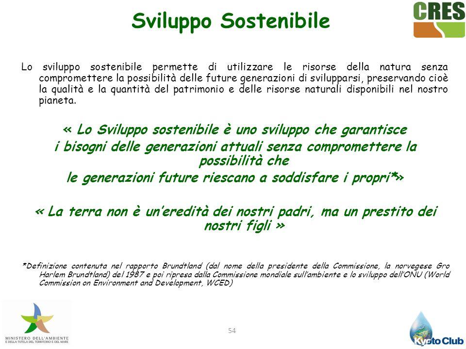 54 Sviluppo Sostenibile Lo sviluppo sostenibile permette di utilizzare le risorse della natura senza compromettere la possibilità delle future generaz