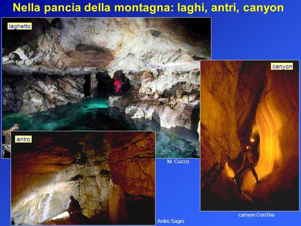 Nella pancia della montagna: laghi, antri, canyon M. Cucco canyon Corchia canyon laghetto Antro Sagro antro