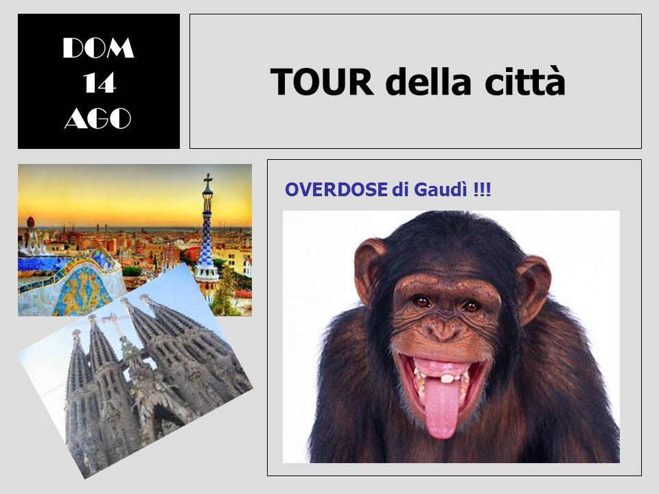 TOUR della città DOM 14 AGO OVERDOSE di Gaudì !!! Nota: Pranzo a carico dei partecipanti. Anche ingressi nei musei sarebbero a carico dei partecipanti