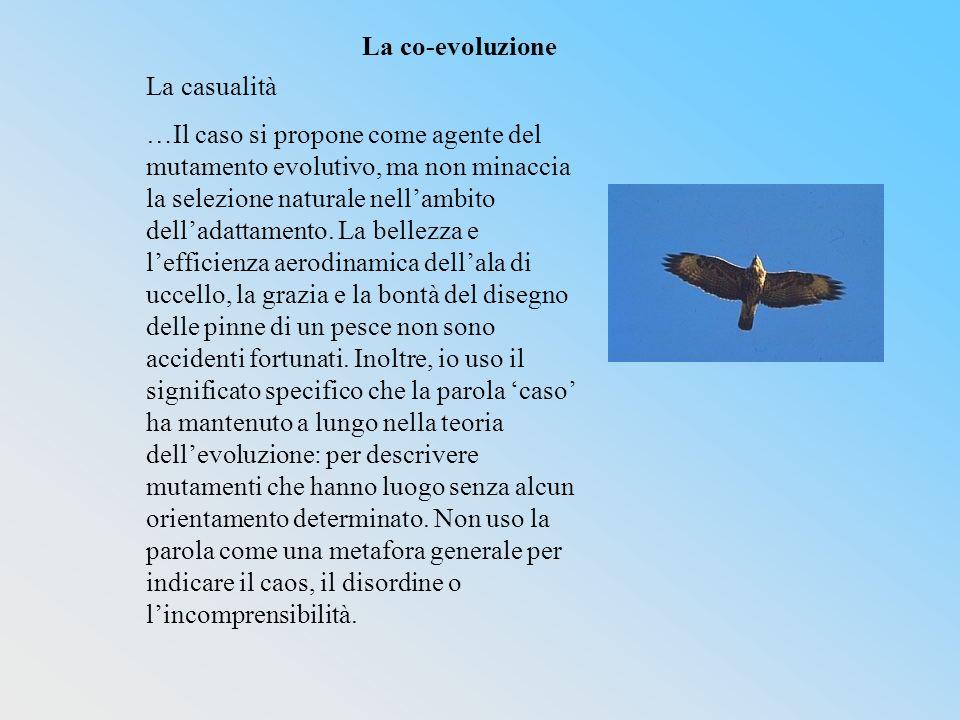 La casualità …Il caso si propone come agente del mutamento evolutivo, ma non minaccia la selezione naturale nellambito delladattamento.
