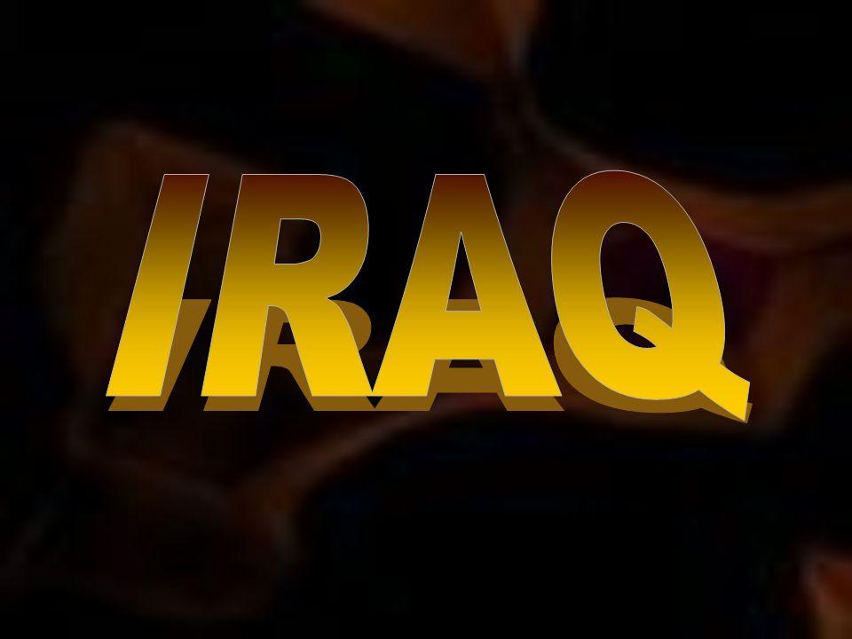 Per ora di queste armi non si è trovata traccia, né sembra che gli iracheni abbiano intenzione di usarle (sempre che le abbiano ancora).