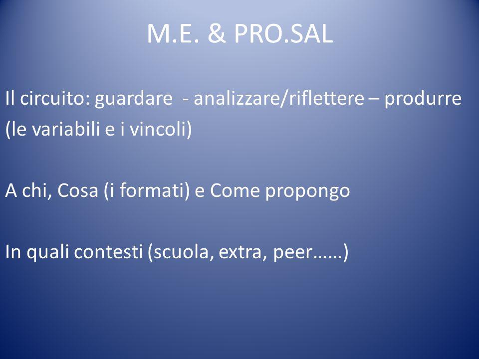 M.E. & PRO.SAL Il circuito: guardare - analizzare/riflettere – produrre (le variabili e i vincoli) A chi, Cosa (i formati) e Come propongo In quali co