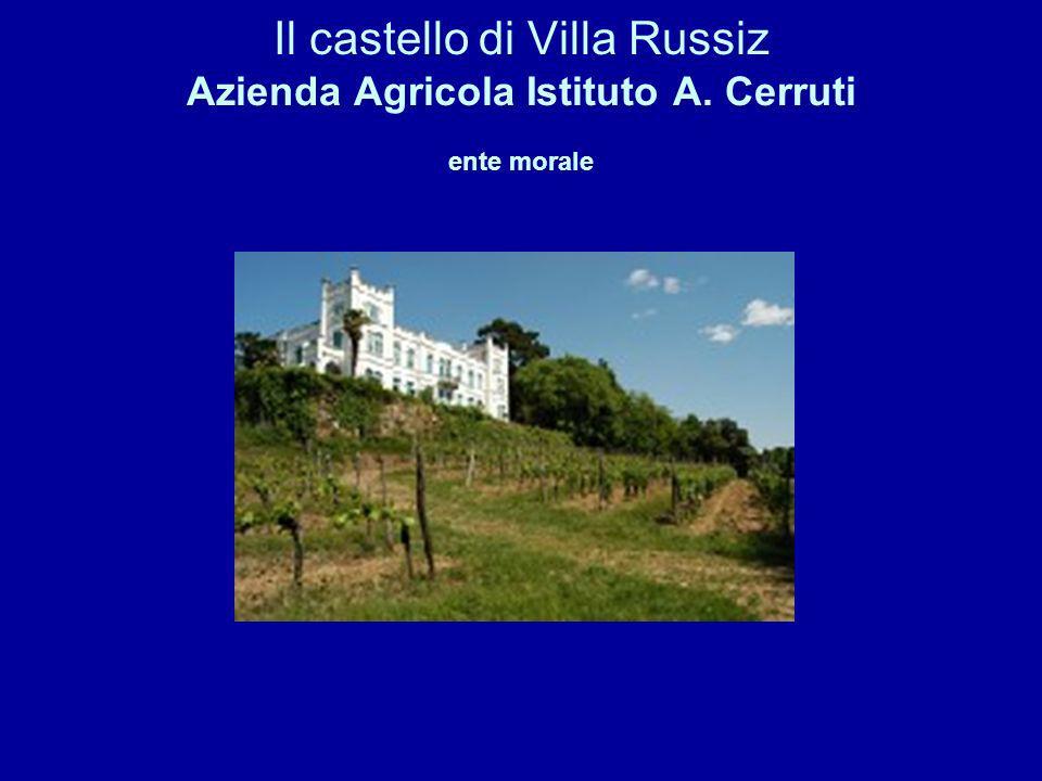 Il castello di Villa Russiz Azienda Agricola Istituto A. Cerruti ente morale