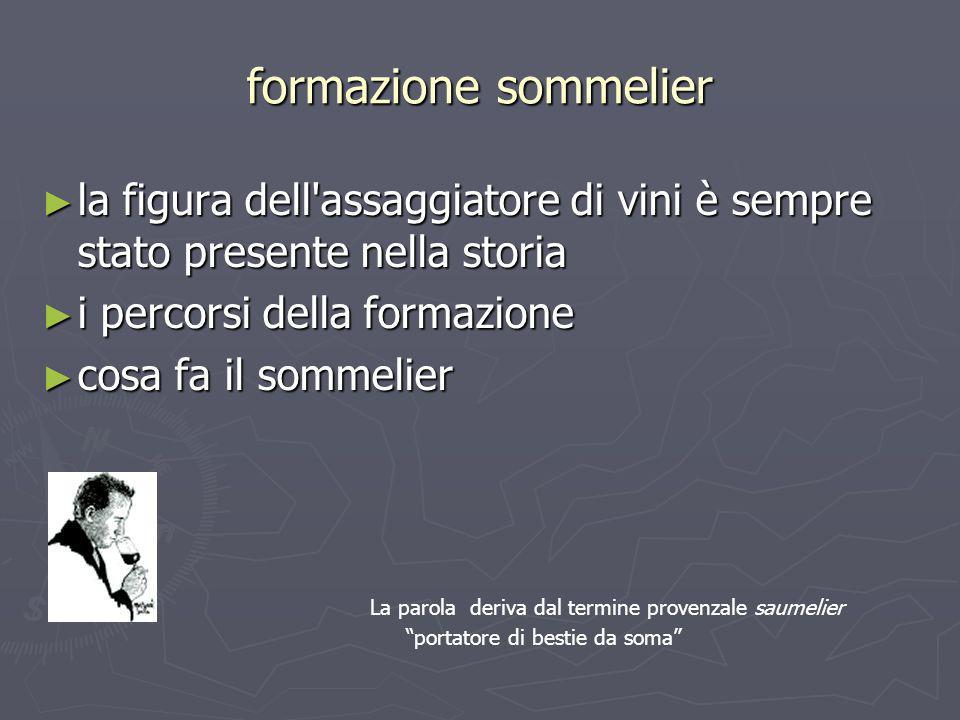 formazione sommelier la figura dell'assaggiatore di vini è sempre stato presente nella storia la figura dell'assaggiatore di vini è sempre stato prese