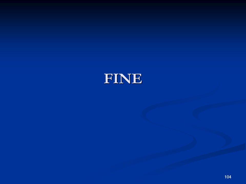 FINE 104