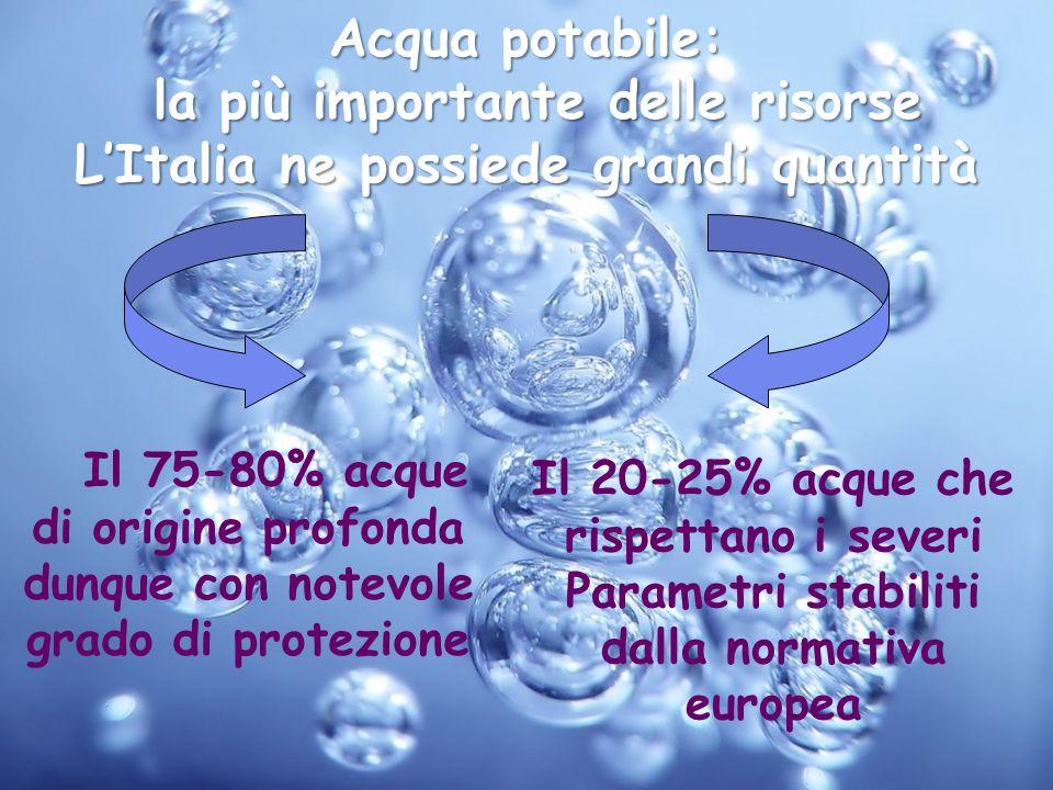 Acqua potabile: la più importante delle risorse LItalia ne possiede grandi quantità la più importante delle risorse LItalia ne possiede grandi quantit