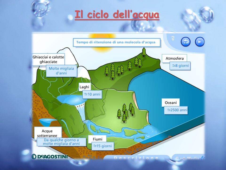 Il ciclo dellacqua Il ciclo dellacqua
