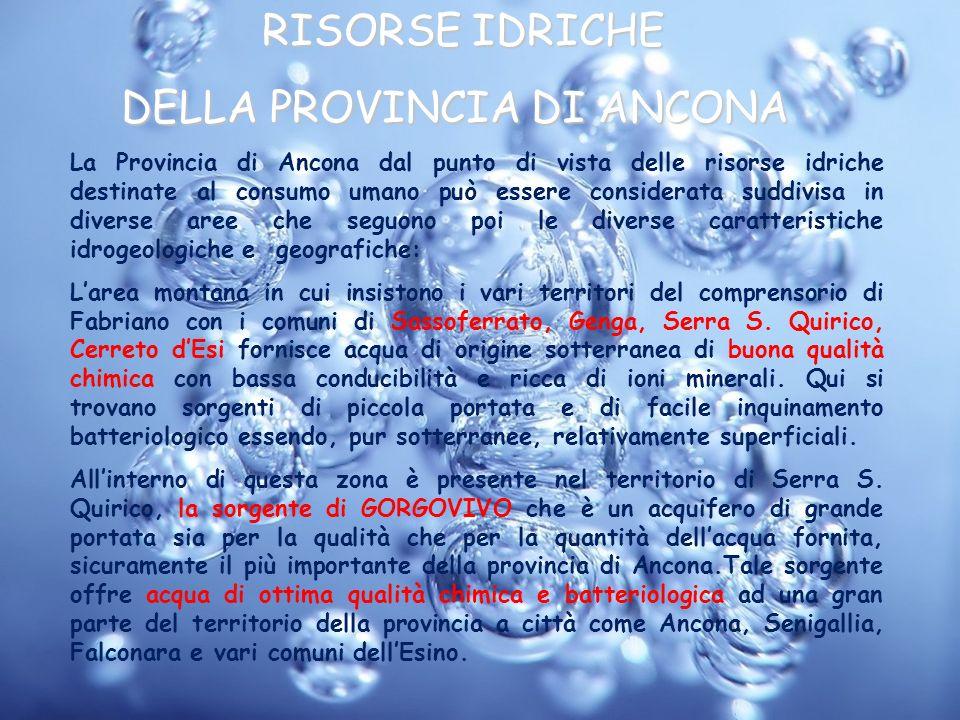 RISORSE IDRICHE DELLA PROVINCIA DI ANCONA DELLA PROVINCIA DI ANCONA La Provincia di Ancona dal punto di vista delle risorse idriche destinate al consu