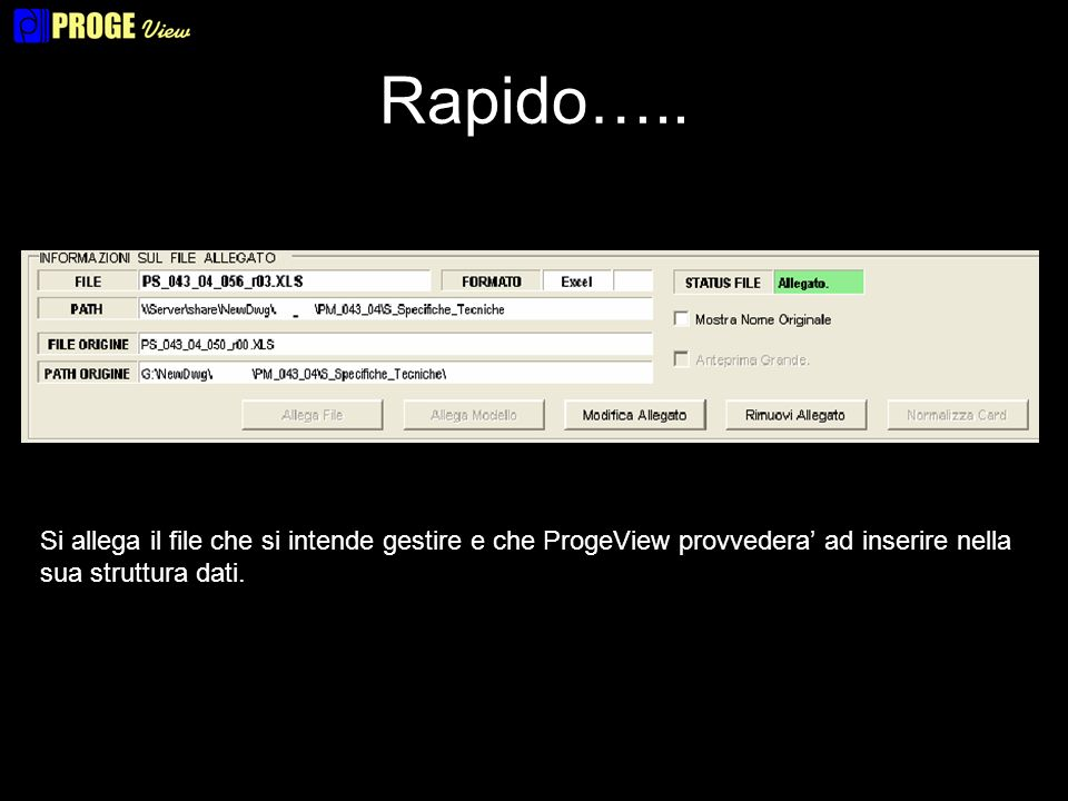 Rapido….. Si allega il file che si intende gestire e che ProgeView provvedera ad inserire nella sua struttura dati.