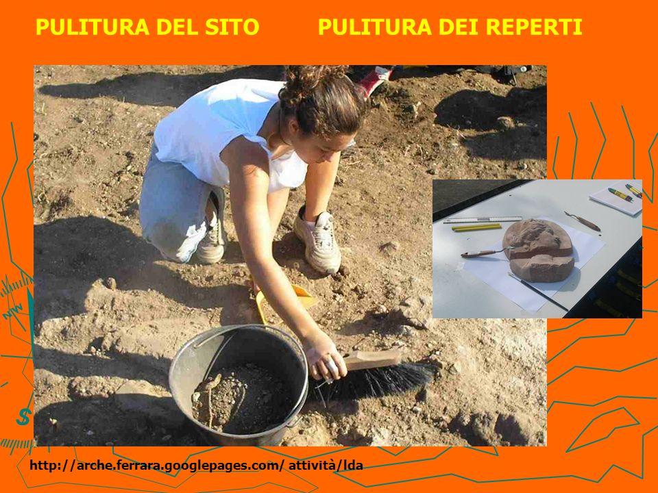 PULITURA DEL SITO PULITURA DEI REPERTI http://arche.ferrara.googlepages.com/ attività/lda